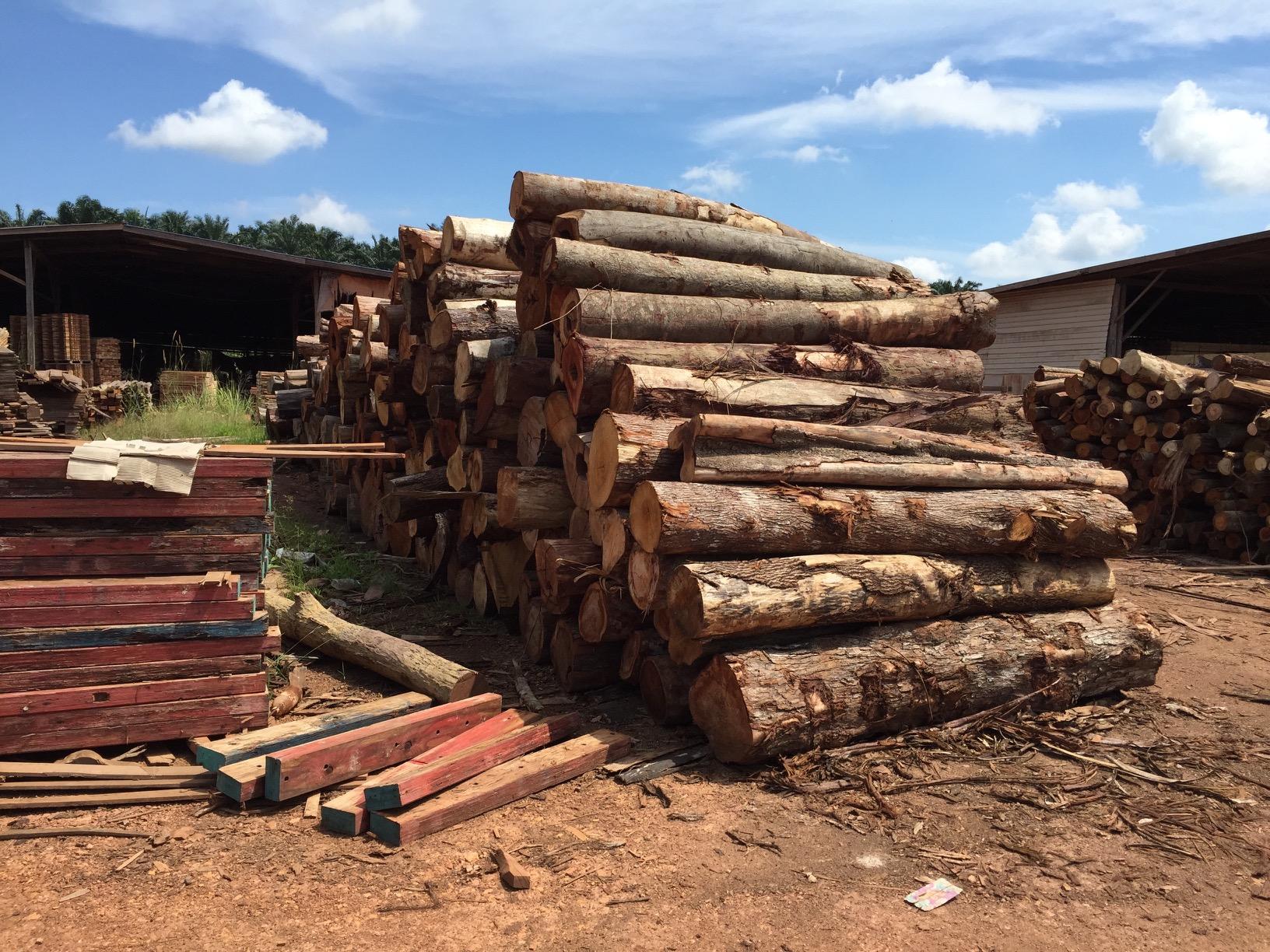 New Wooden Pallets - XCEL Industrial Supplies